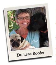 Focus Dog Training, Colorado Springs, Dr. Lena Roeder