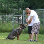 focus-dog-training-colorado-springs-dog-bites